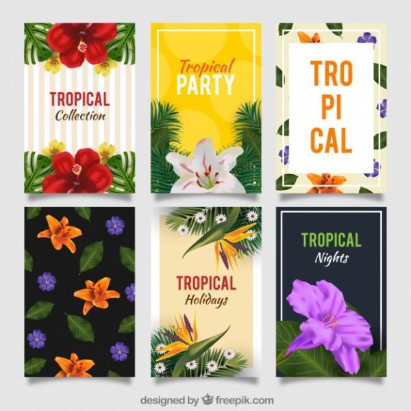 Conjunto De Convites De Festa Tropical