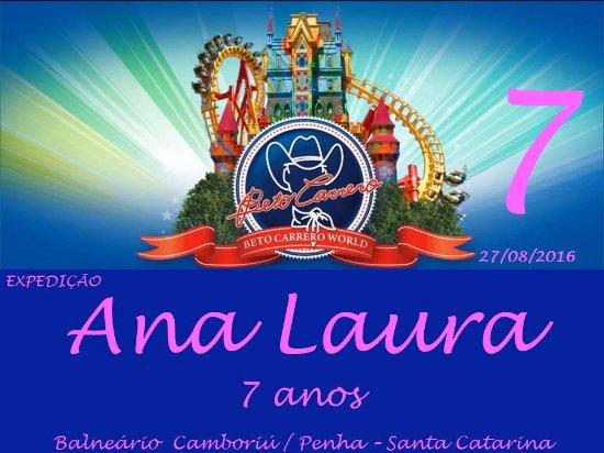 Aniversário Da Princesa D  Ana Laura